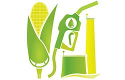 Usina de etanol de milho em MT recebe aval para iniciar testes com cogeração de energia