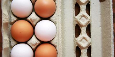 A diferença entre os preços de ovos brancos e vermelhos é recorde