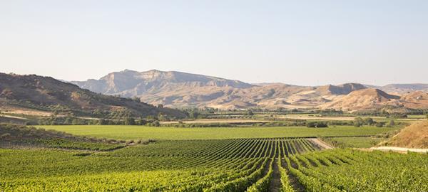 CCJ aprova texto relativo a plano plurianual para setor agropecuário, diz FPA