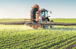 Novos destinos da inovação no agro