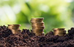 Contratação de crédito rural registra aumento de 13%