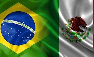Brasil recebe certificado para exportar ovos ao México