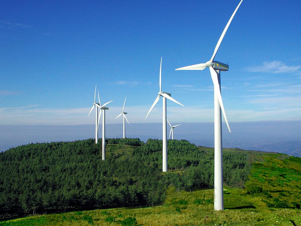 ABEEólica comemora resultado do leilão com 1,04 GW de nova potência eólica