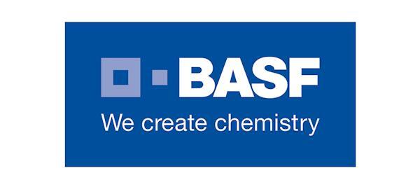 Basf lança programa de estágio de férias para 2018