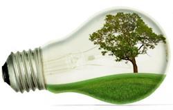 Workshop discute soluções que pesquisas científicas podem oferecer para o aumento da bioenergia no país