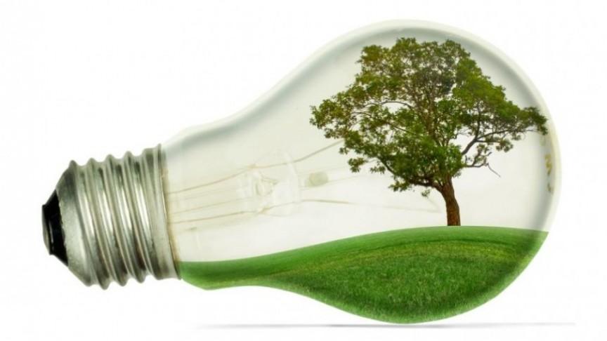 Produtora de eletricidade com biomassa mira expansão no Brasil