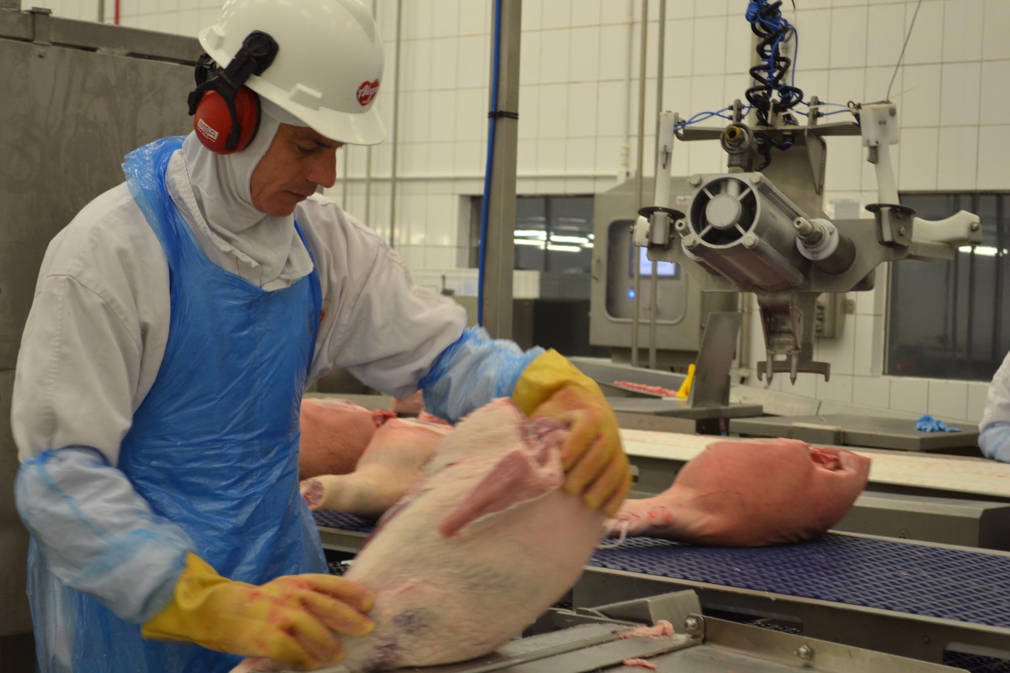 China pedirá a processadores de carne teste para vírus da PSA