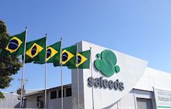 Ministério da Agricultura certifica Safeeds como empresa livre de Ractopamina