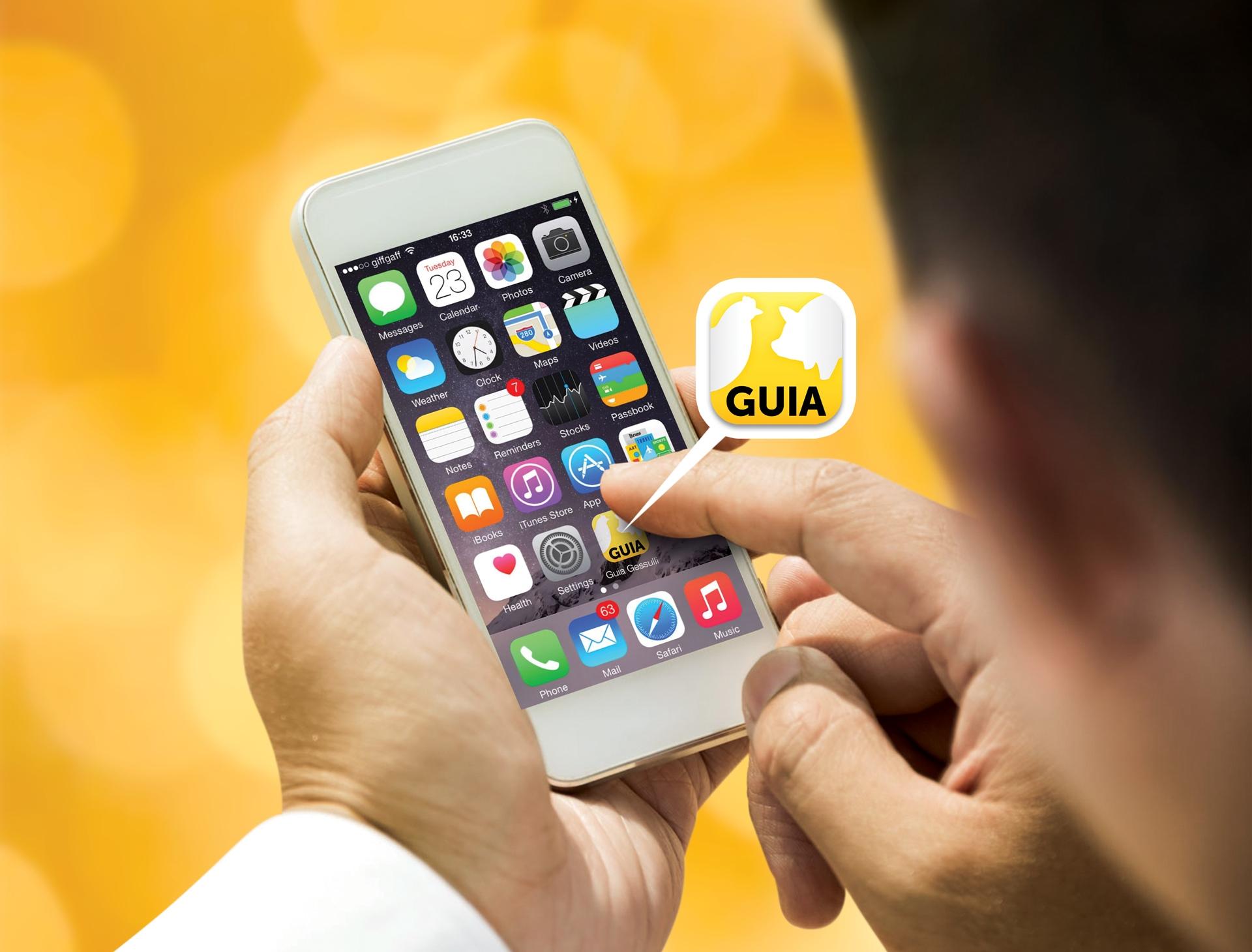 Guia Gessulli 3.0: Conectando negócios e pessoas