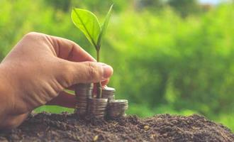 Ipea projeta crescimento do PIB agro em 1,5% para 2020