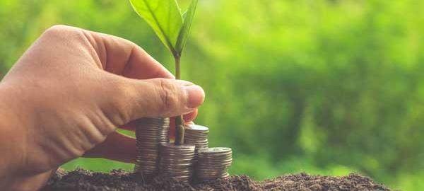 Cooperativas de crédito crescem e colaboram com o avanço do agronegócio brasileiro