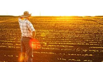 Agricultura depois da pandemia