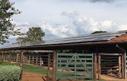 Micro e mini geração de energia solar superam marca histórica de 100 MW