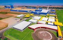 Complexo Avícola da C.Vale completa 20 anos com meta de produzir 1,2 milhão de frangos/dia