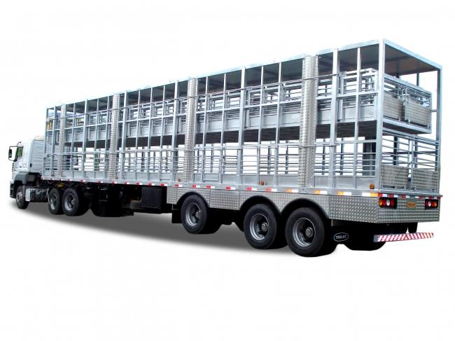 Nova altura para caminhões que transportam animais vivos é aprovada
