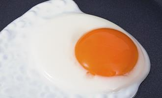 Consumo de ovos deve se manter elevado em 2021, aponta Cepea