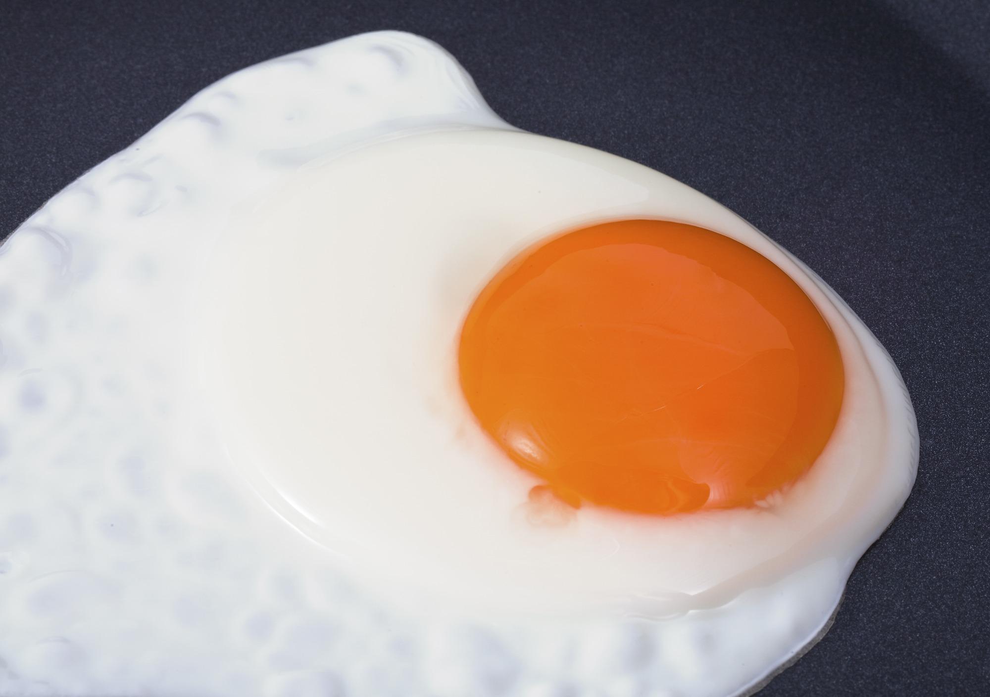 Espanhóis vão instalar produtoras de ovos fritos congelados e líquidos no RS