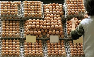 Após queda no consumo, donos de granjas apostam nas festas de fim de ano
