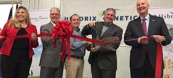 Empresa de genética inaugura nova incubadora de perus no Nebraska