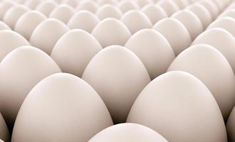 Quaresma e insumos fazem preços dos ovos de galinha subirem ao consumidor