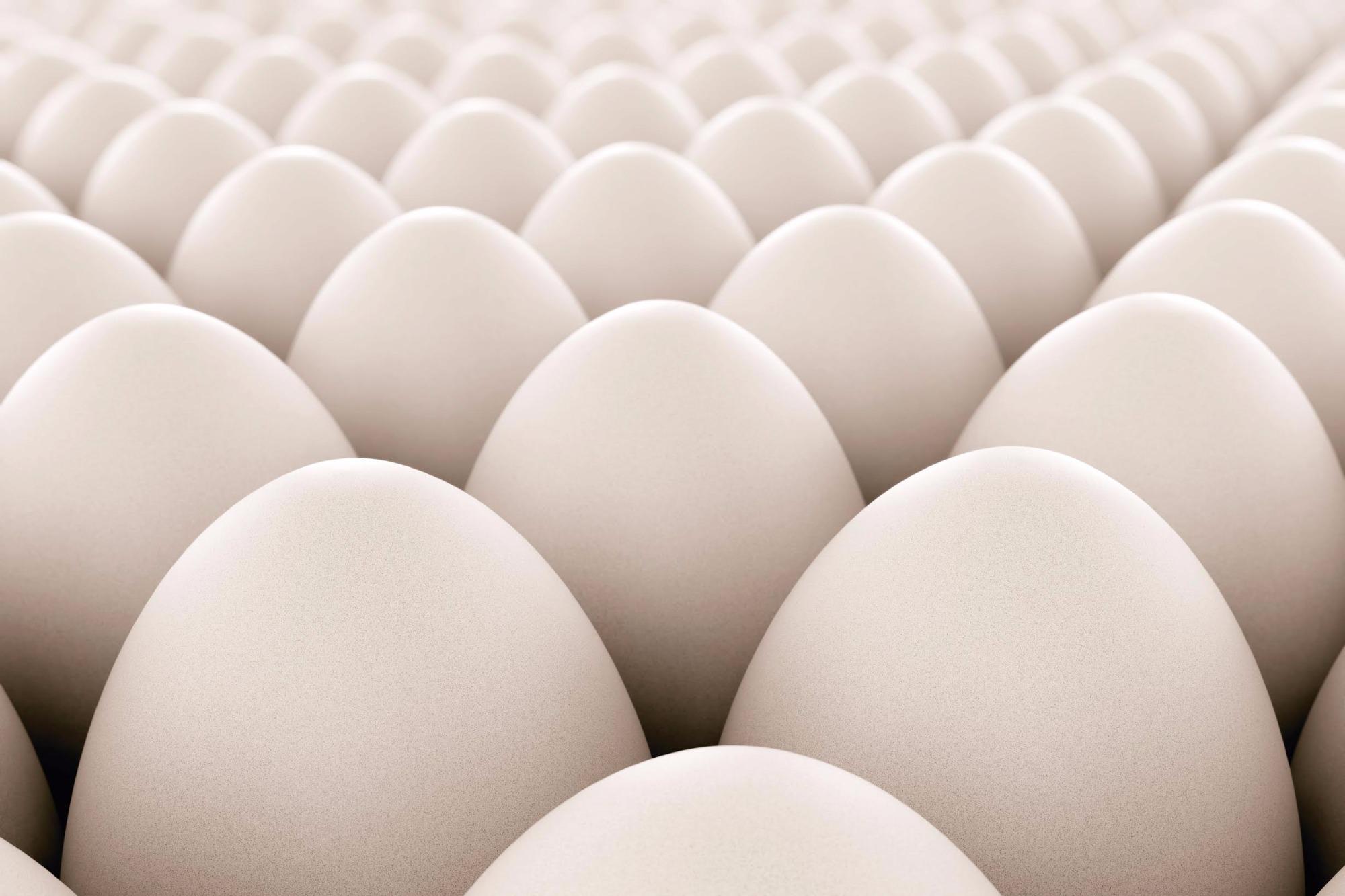 Impulsionada por vendas de ovo industrializado, exportação cresce em junho