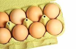 Negociações de ovos melhoram nesta segunda quinzena, segundo Cepea