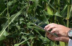 A tecnologia na agricultura