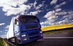 Paraná anuncia ferramenta que regulariza transporte animal
