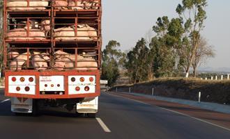 Santa Catarina bate recorde nas exportações de maçãs e suínos