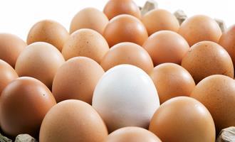 Ovos Mantiqueira e família Abilio Diniz doarão 12 milhões de ovos