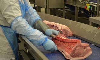 China suspende grande parte das importações de carne suína holandesa após surtos de Covid-19