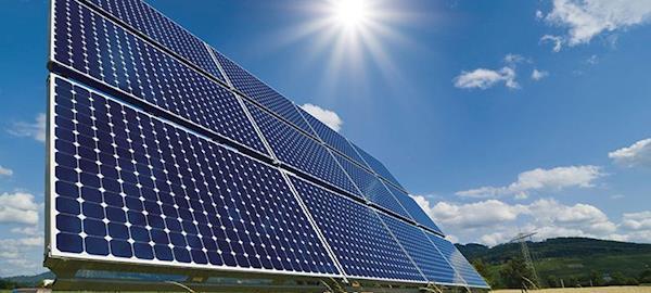 Energia solar se torna solução em granjas