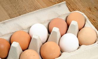 Mato Grosso registra aumento de 7% no consumo de ovos