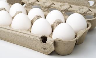 Consumo de ovos deve continuar elevado em 2021, diz Cepea