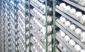 Rússia planeja aumentar imposto de importação de ovos para incubação