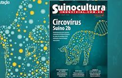 Circovírus suíno 2b: isolamento e taxa de mutação