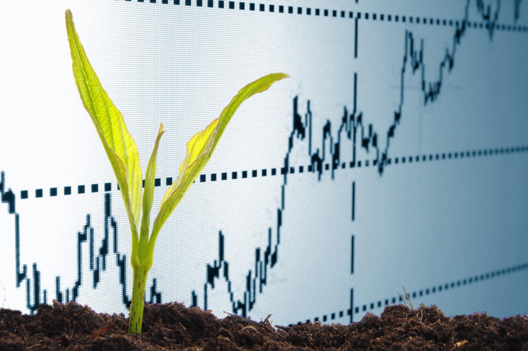 Preços agrícolas fecham o mês de julho com queda de 0,04%
