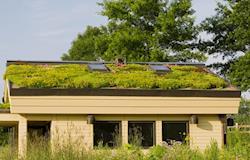 Aprovada em Blumenau lei que incentiva uso do telhado verde