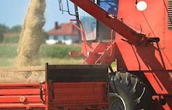 Conab estima safra de 226 milhões de toneladas de grãos