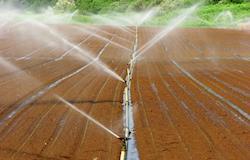 Senar capacita produtor em uso eficiente da água