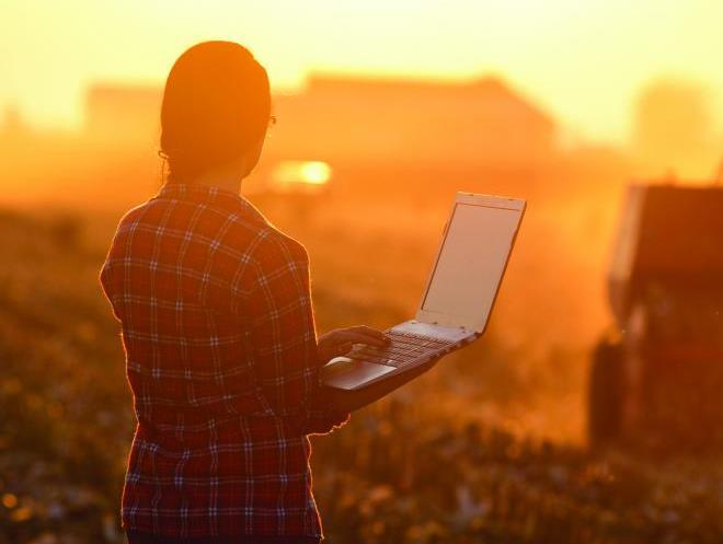 Transformação digital da empresa ao campo