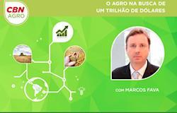 """Marcos Fava Neves ministra palestras sobre """"O agro na busca de um trilhão de dólares"""""""