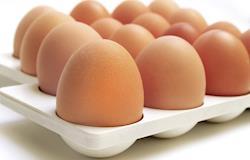 EUA recolhem mais de 200 mi de ovos por risco de contaminação com salmonela