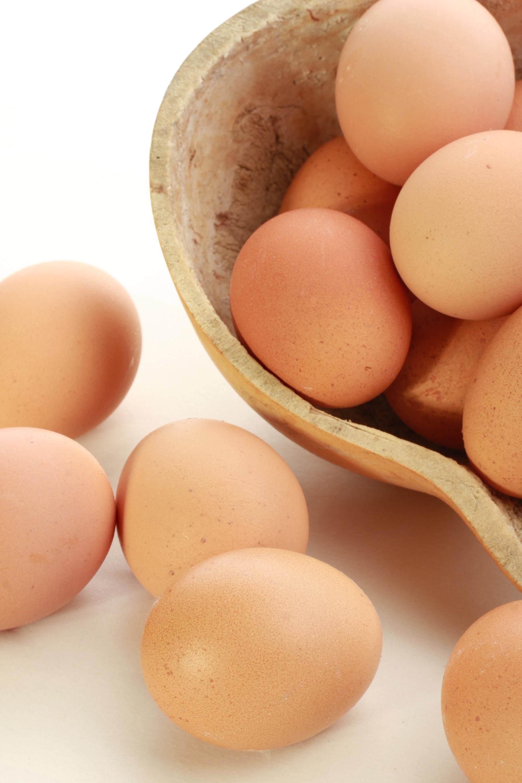 Produção de ovos no Paraná cresce e chega a 292 milhões de dúzias