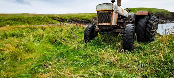 Agricultura coroada de êxitos e de ciência