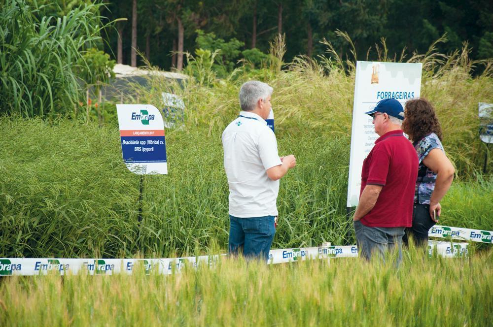 Tecnologias da Embrapa Agroenergia na AgroBrasília