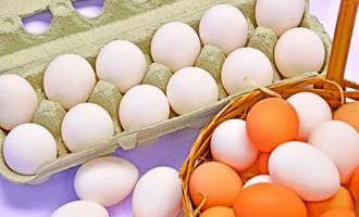 Produção de ovos atinge marca recorde de 54 bilhões de unidades