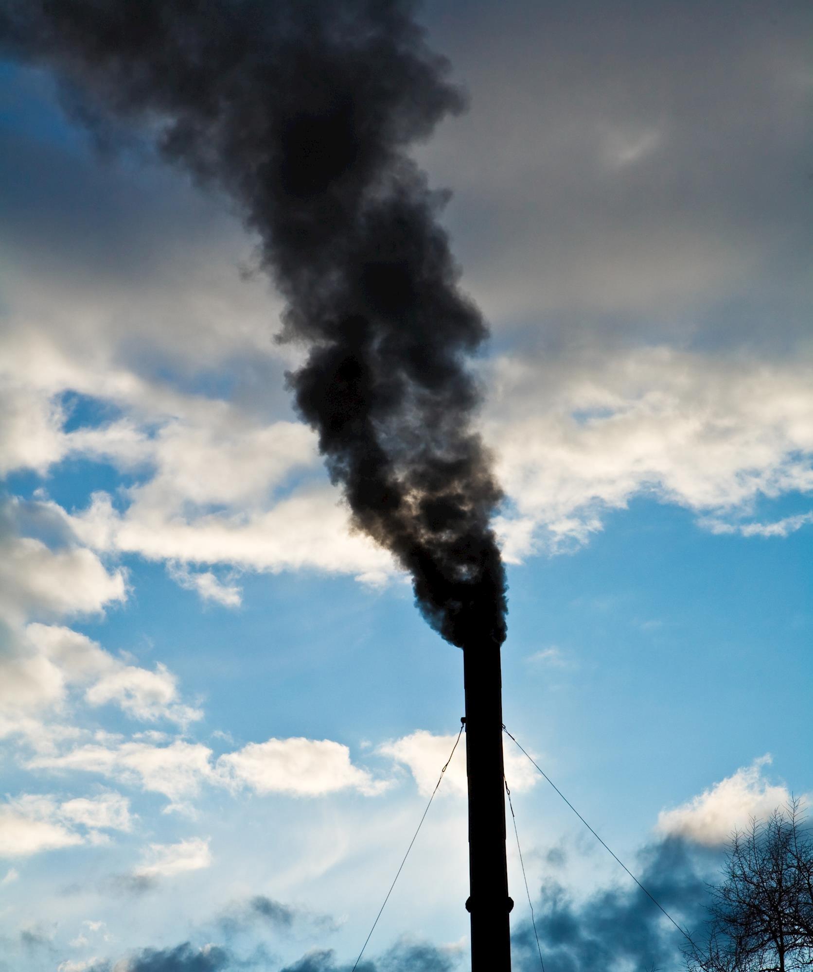 Wilson Sons publica inventário de emissões de gases de 2017