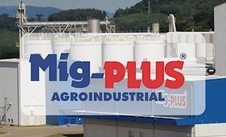 Mig-Plus lança linha de produtos para nutrição de suínos na AveSui