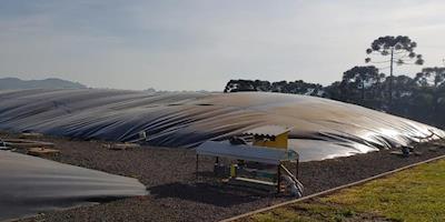 Embrapa realiza webinar sobre o uso de animais mortos  para produção de biogás